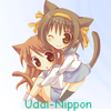 UDAI-NIPPON