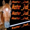 masterjediviel
