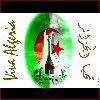 Algeriano423