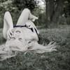 Photo-Moov