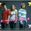 x-world-hp-x