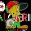 my-life-algerie