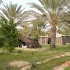 Tunisie--2008