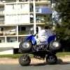 hamid89300