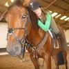 horse-passion62880
