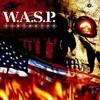 wasp25