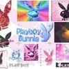 le-playboy-du14
