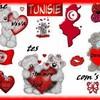 tunisiennedu830