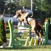 HorsesxPiix