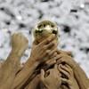 campionni-2006