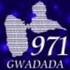 edwidwi971