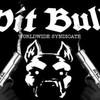 ptite-pitbul62