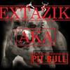 EXTAZIK-illicite-muzik