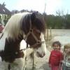 horseland556