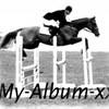 my-album--x