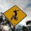 rider6663527