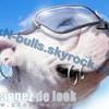pixN-bulls