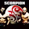 scorpionlefilm