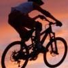 rider245