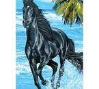 image de cheval