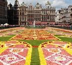 Tapis de fleurs Bruxelles Grand-Place