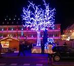 L'arbre et ours bleue de Strasbourg