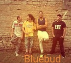 Groupe BlueBud