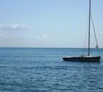 Le bleu de Corse