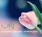salut a tous simple rose pour tous mes visiteurs
