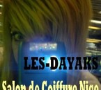 Les-Dayaks