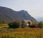 Dans les vignes de Savoie IN