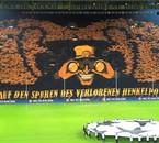 tifosi BVB Dortmund