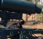Abrit pour chèvre, ancien missile au laos !