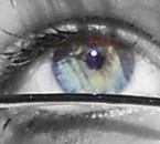 Mon oeil sans retouche a part le gris :)
