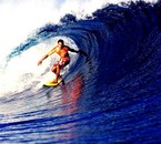 KELLY SLATER the wave