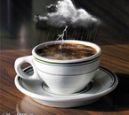 A storm in a T cup  lol
