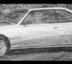 505 couper