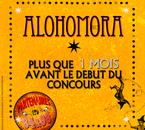 Êtes-vous prêts ? QU'attendez-vous de Alohomora 2013 ?