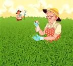 Legalize marijuana, eh, eh.. (8)