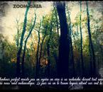 Mes citations et photographies réalisées par moi