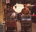 Daniel Radcliffe & Rupert Grint