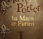 Harry Potter 1 en breton