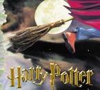 Harry Potter 1 en néerlandais
