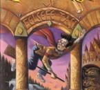 Harry Potter 1 en turc