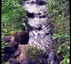 Ruisseau ♥