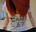 Little cat :3