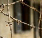 blatnoy prison armenian zona