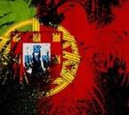 J aime mon pays! viva portugal <3