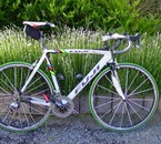Fuji roubaix 2007 LTD with sram red and fulcrum 1 .