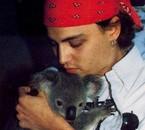 Johnny et le Koala